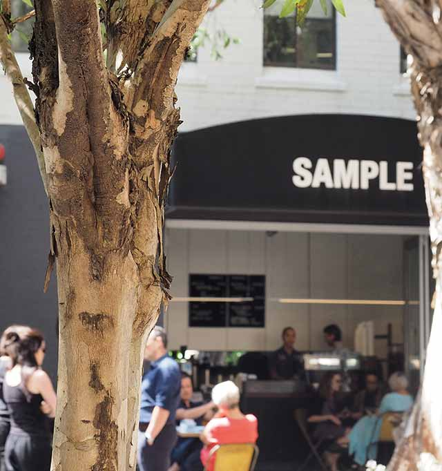 Sample Coffee, Surry Hills